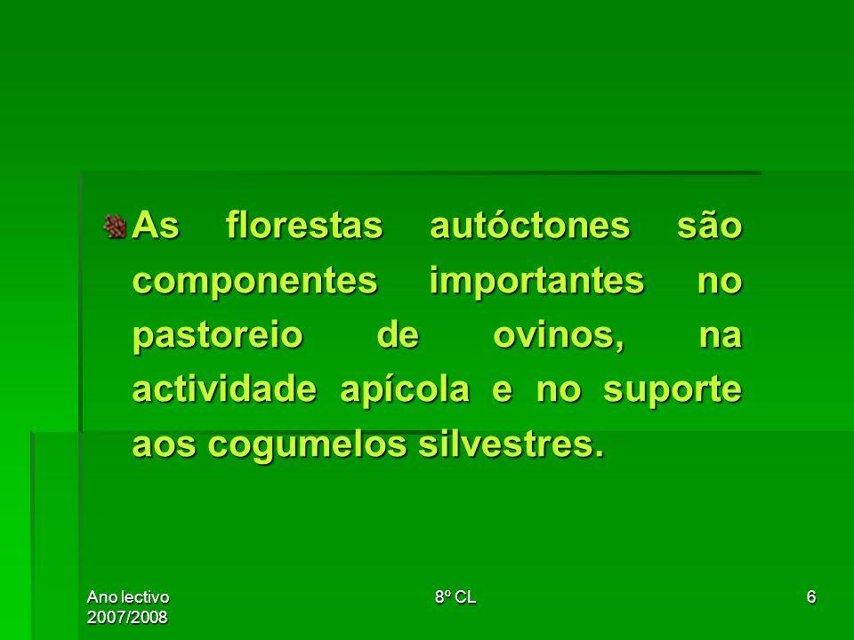 Ano lectivo 2007/20088º CL27 As florestas autóctones são componentes importantes no pastoreio de ovinos, na actividade apícola e no suporte aos cogumelos silvestres.