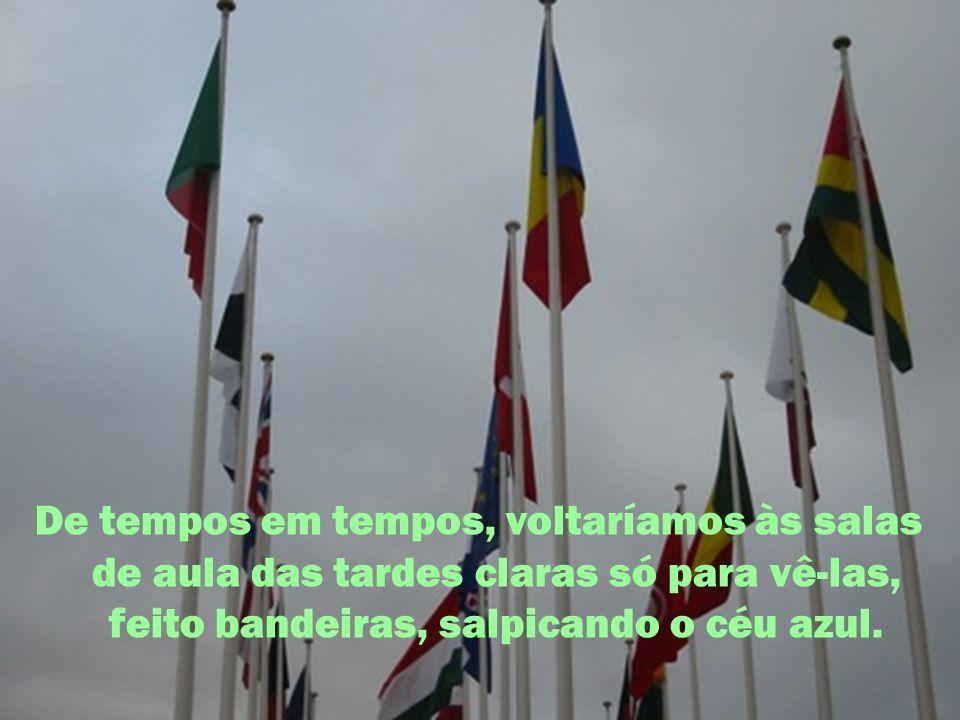 De tempos em tempos, voltaríamos às salas de aula das tardes claras só para vê-las, feito bandeiras, salpicando o céu azul.