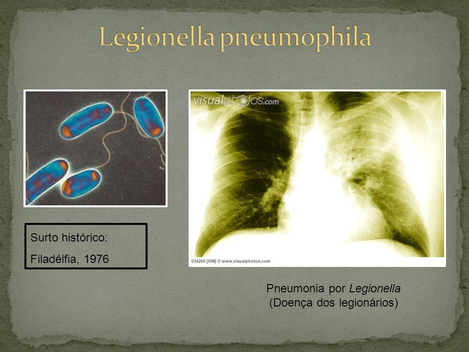 Pneumonia por Legionella (Doença dos legionários) Surto histórico: Filadélfia, 1976