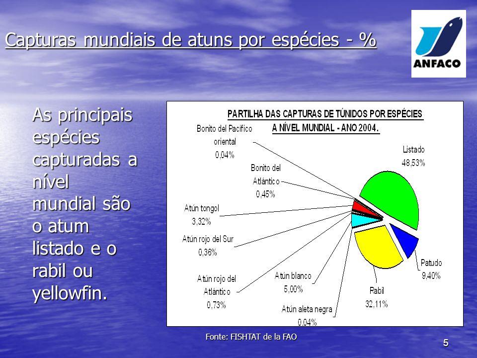 5 As principais espécies capturadas a nível mundial são o atum listado e o rabil ou yellowfin.