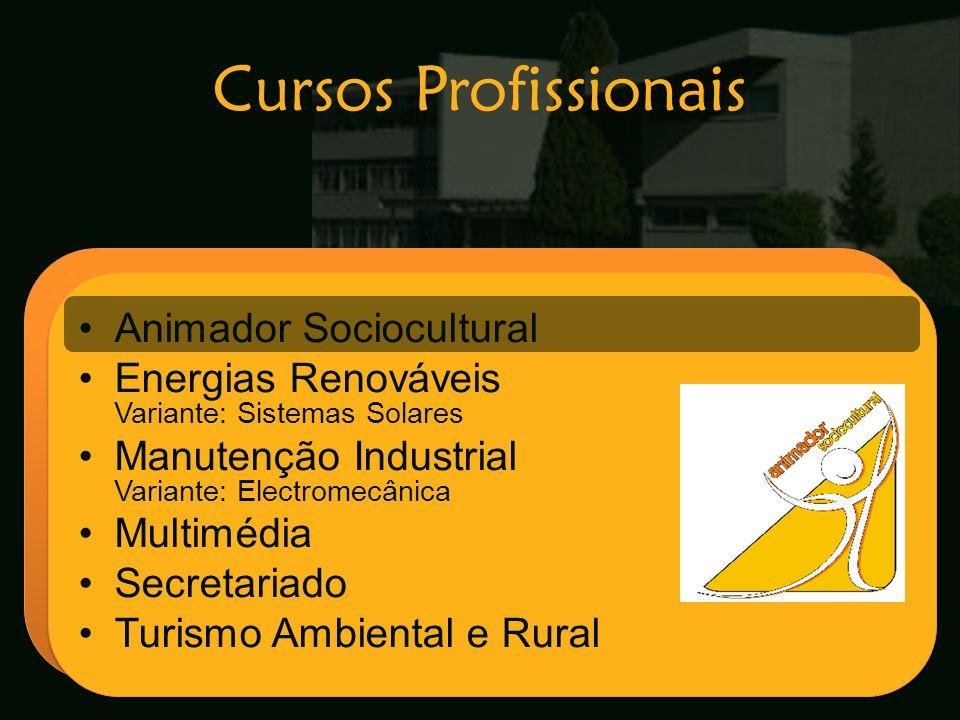 Escola Secundária de Arganil Animador Sociocultural Energias Renováveis Variante: Sistemas Solares Manutenção Industrial Variante: Electromecânica Mul