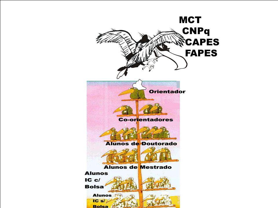 MCT CNPq CAPES FAPES
