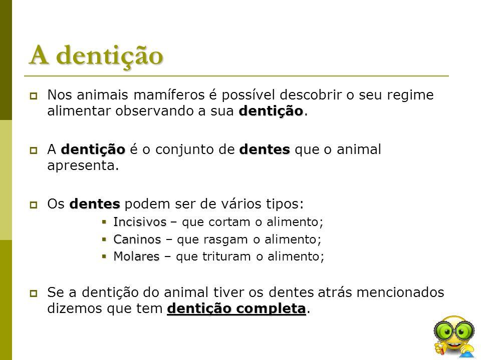 A dentição dentição Nos animais mamíferos é possível descobrir o seu regime alimentar observando a sua dentição. dentiçãodentes A dentição é o conjunt