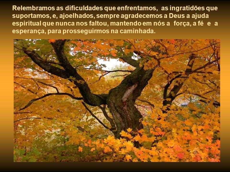 Quando as árvores se despem de todas as suas folhas. Quando a natureza se acalma, recolhendo-se em prece, também em nossas vidas, no aconchego do lar,
