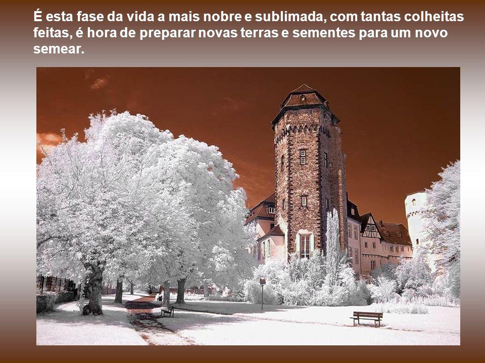 Quando o inverno chegar, no trecho final de nossa estrada, quando tudo que nos restar forem vivências e saudades....
