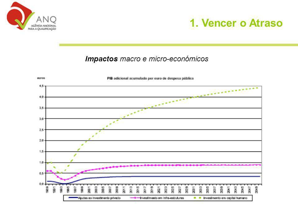 Impactos macro e micro-económicos