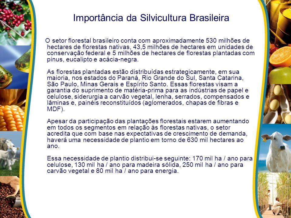 Importância da Silvicultura Brasileira O setor florestal brasileiro conta com aproximadamente 530 milhões de hectares de florestas nativas, 43,5 milhõ