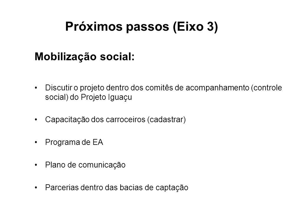 Próximos passos (Eixo 3) Mobilização social: Discutir o projeto dentro dos comitês de acompanhamento (controle social) do Projeto Iguaçu Capacitação dos carroceiros (cadastrar) Programa de EA Plano de comunicação Parcerias dentro das bacias de captação
