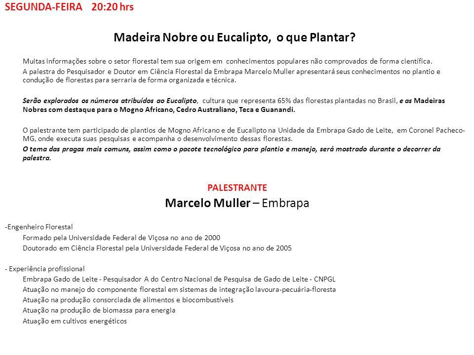Panorama do Mercado de Madeira em Minas Gerais A palestra será voltada para mostrar detalhes das florestas comerciais no Estado de Minas Gerais, maior Estado do Brasil em Reflorestamentos.