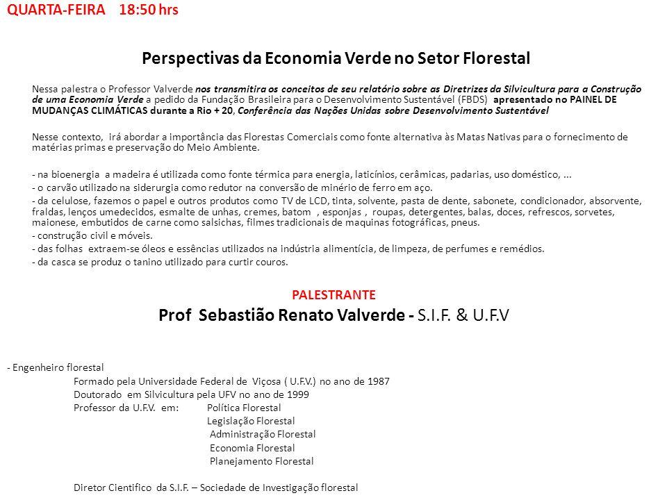 Perspectivas da Economia Verde no Setor Florestal Nessa palestra o Professor Valverde nos transmitira os conceitos de seu relatório sobre as Diretrize