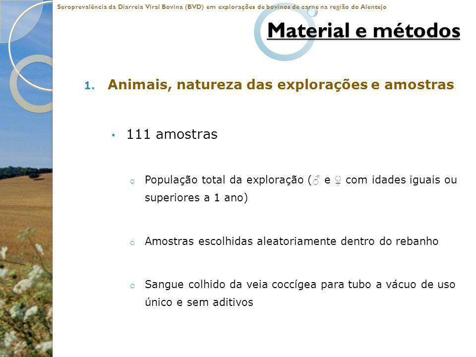 Material e métodos 1. Animais, natureza das explorações e amostras 111 amostras o População total da exploração ( e com idades iguais ou superiores a