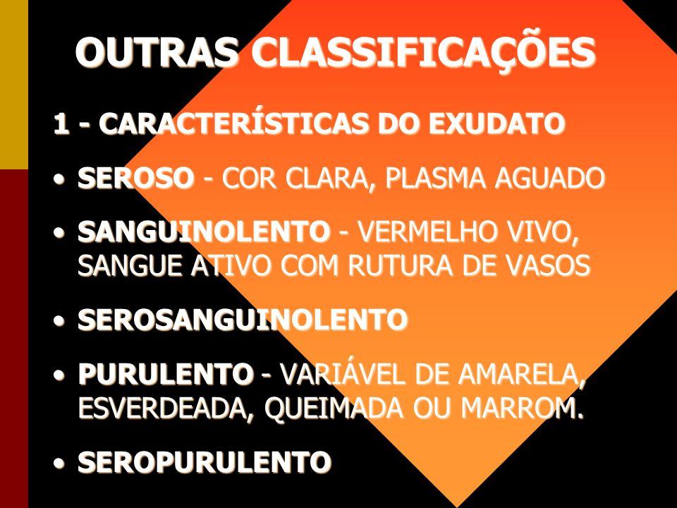 OUTRAS CLASSIFICAÇÕES 1 - CARACTERÍSTICAS DO EXUDATO SEROSO - COR CLARA, PLASMA AGUADOSEROSO - COR CLARA, PLASMA AGUADO SANGUINOLENTO - VERMELHO VIVO,