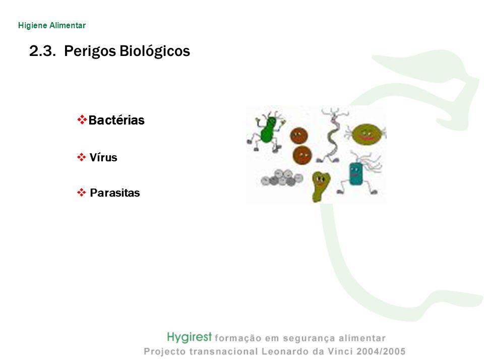 2.3. Perigos Biológicos Bactérias Vírus Parasitas Higiene Alimentar