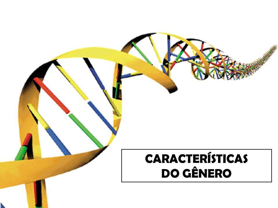 RESENHA CARACTERÍSTICAS Uma resenha possui os seguintes elementos: Título; Referência bibliográfica da obra; Sinopse ou síntese do conteúdo; Avaliação crítica.