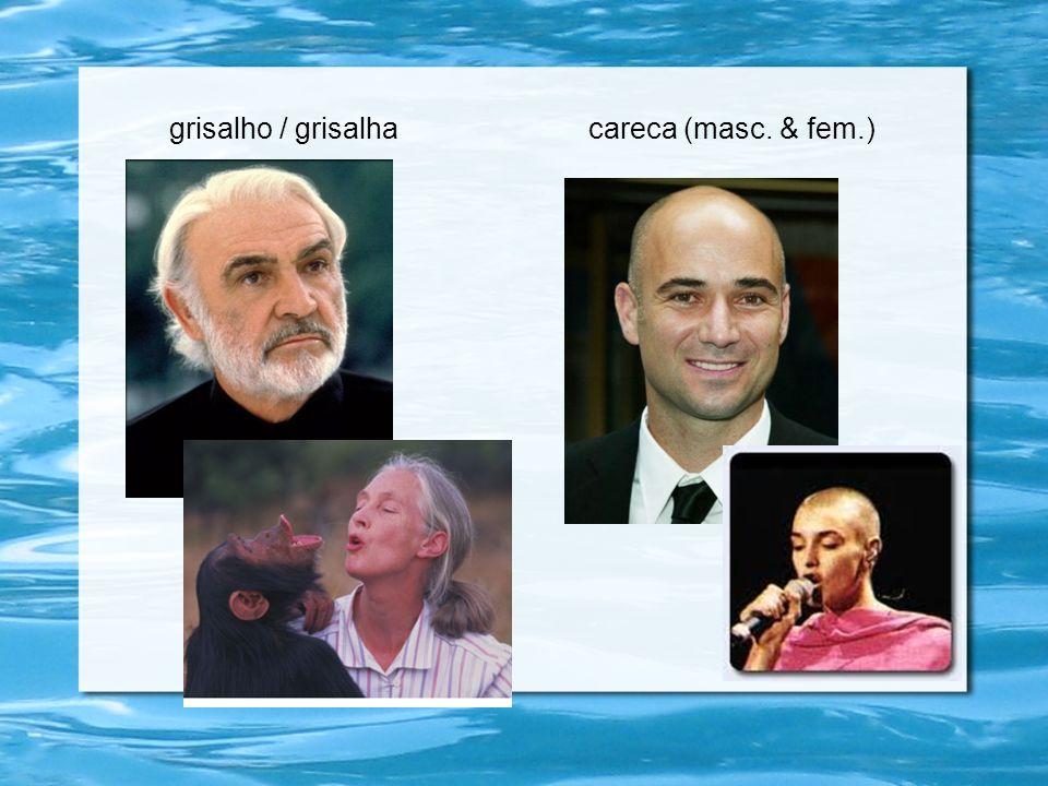 grisalho / grisalhacareca (masc. & fem.) g