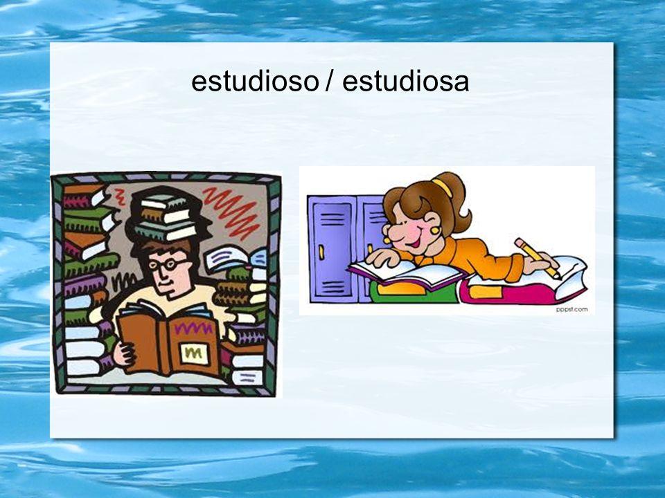 estudioso / estudiosa