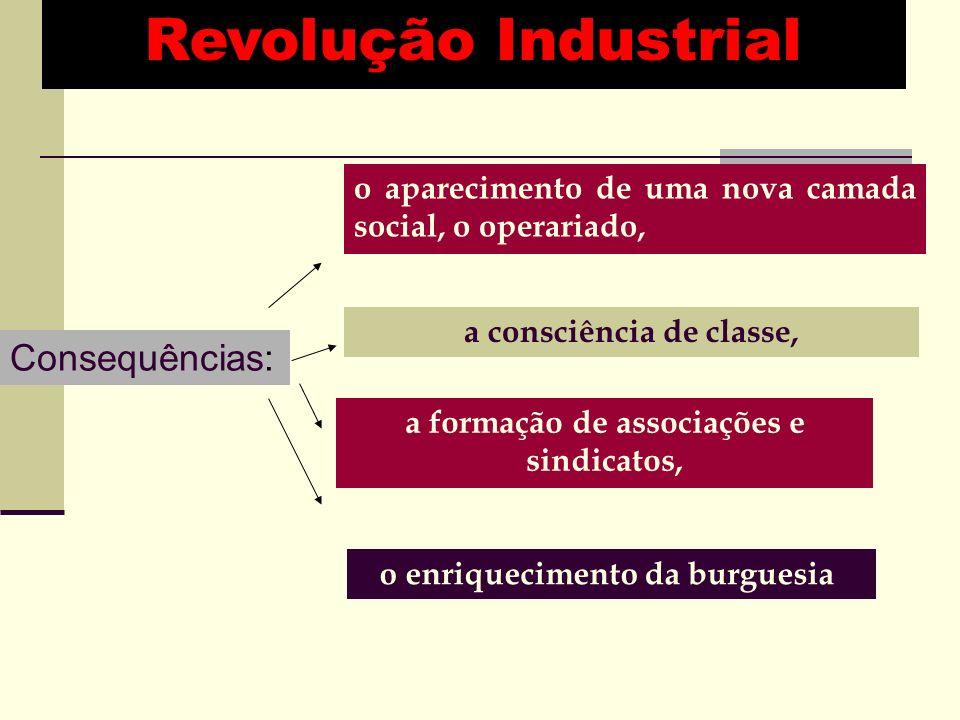 Consequências: o aparecimento de uma nova camada social, o operariado, a consciência de classe, a formação de associações e sindicatos, o enriquecimento da burguesia.