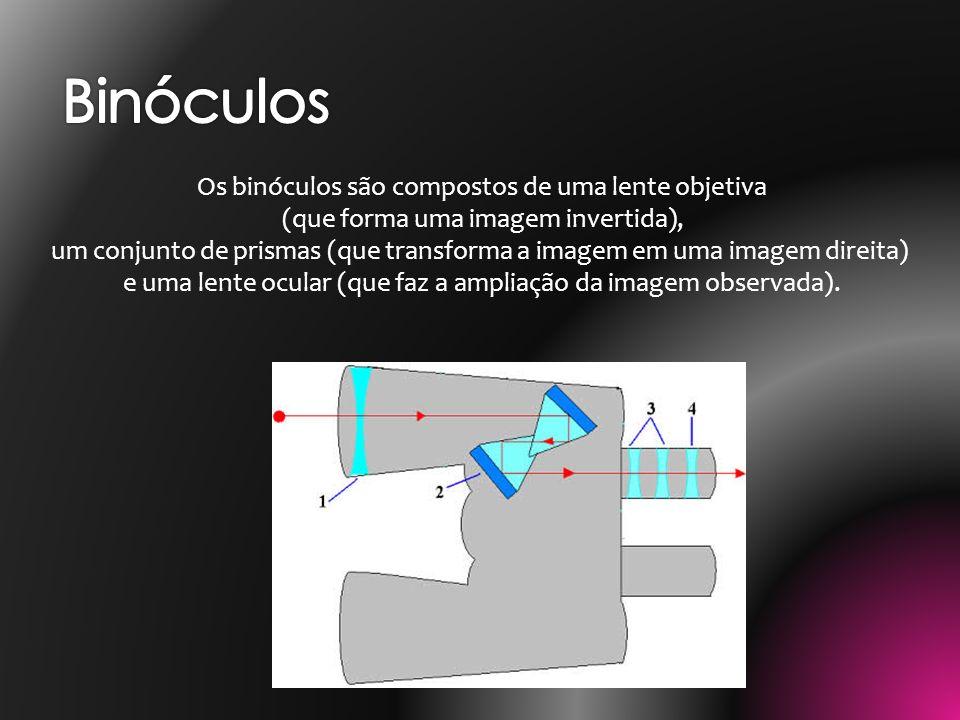 Os binóculos são compostos de uma lente objetiva (que forma uma imagem invertida), um conjunto de prismas (que transforma a imagem em uma imagem direi