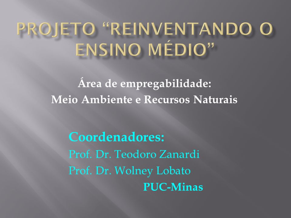 Área de empregabilidade: Meio Ambiente e Recursos Naturais Coordenadores: Prof. Dr. Teodoro Zanardi Prof. Dr. Wolney Lobato PUC-Minas
