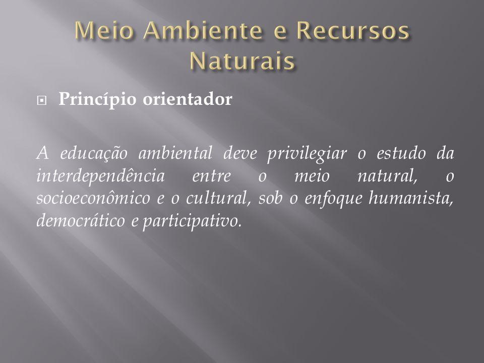 Princípio orientador A educação ambiental deve privilegiar o estudo da interdependência entre o meio natural, o socioeconômico e o cultural, sob o enf