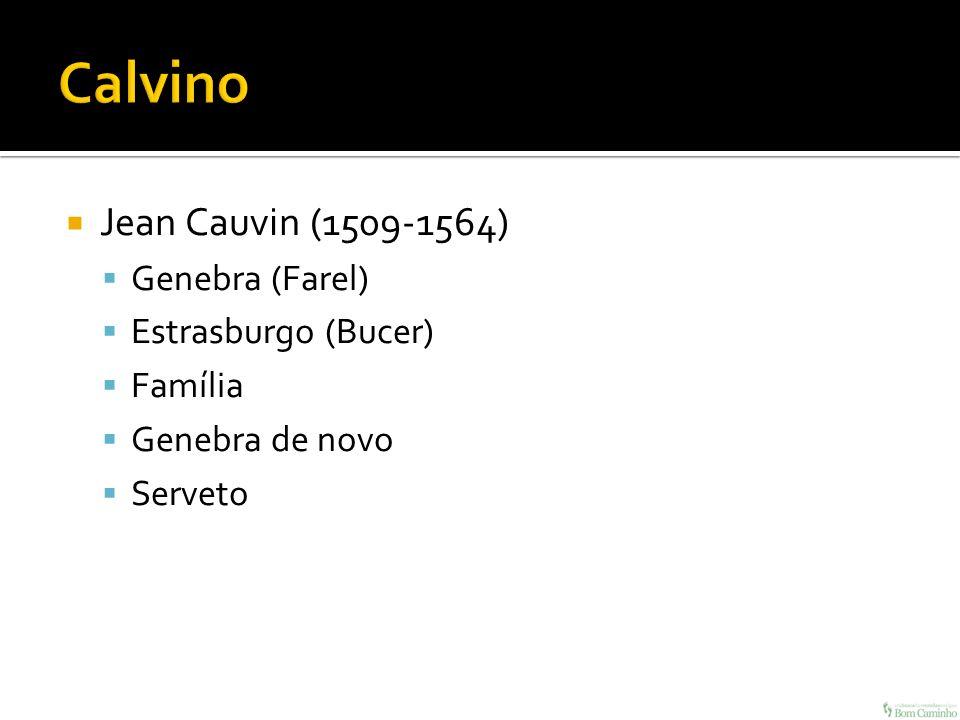 Jean Cauvin (1509-1564) Genebra (Farel) Estrasburgo (Bucer) Família Genebra de novo Serveto