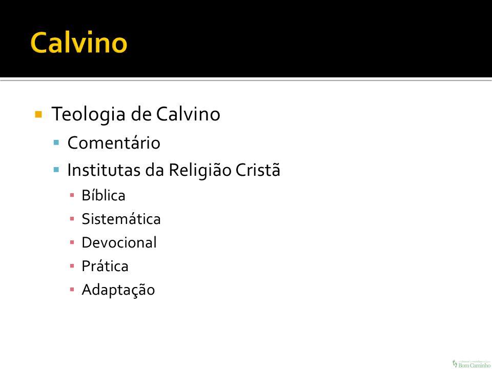 Teologia de Calvino Comentário Institutas da Religião Cristã Bíblica Sistemática Devocional Prática Adaptação
