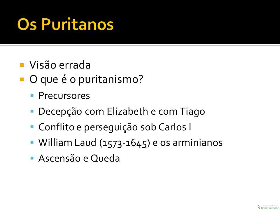 Visão errada O que é o puritanismo? Precursores Decepção com Elizabeth e com Tiago Conflito e perseguição sob Carlos I William Laud (1573-1645) e os a