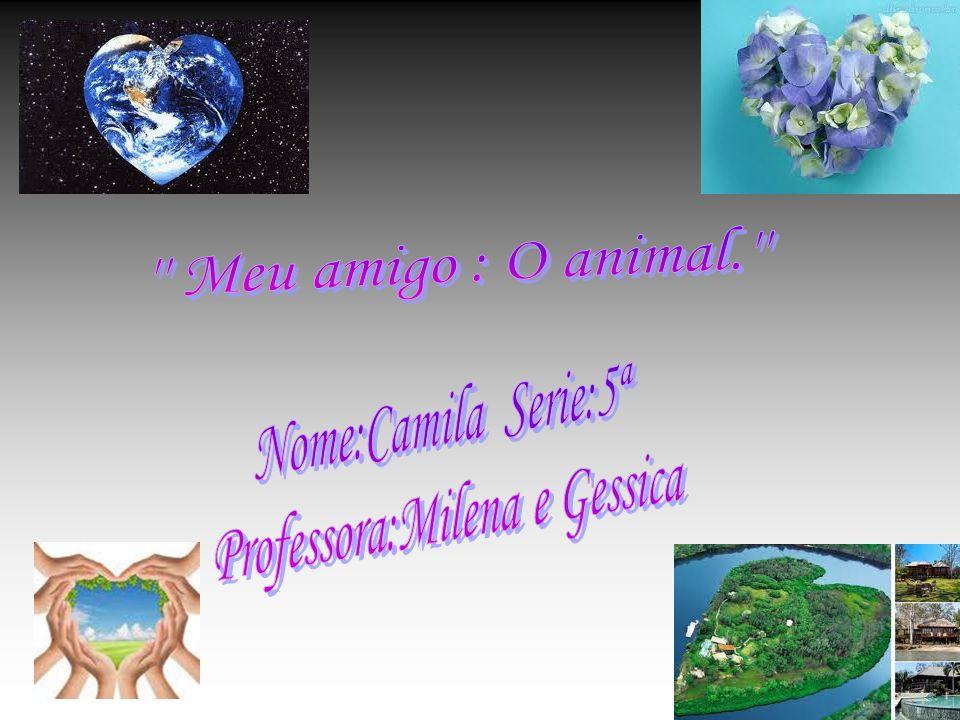 Introdução Os animais silvestres e marinhos são muito importantes para as crianças se divertirem e também são importantes para as pessoas deficientes.