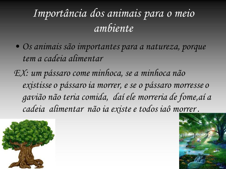 Importância dos animais para o meio ambiente Os animais são importantes para a natureza, porque tem a cadeia alimentar EX: um pássaro come minhoca, se