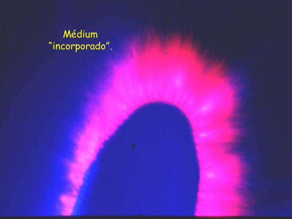 Outro médium, na mesma oportunidade dos anteriores, no seu estado normal.