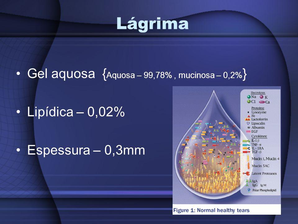 Lágrima Função metabólica; Óptica; Limpeza; Antimicrobiana; Lubrificante.