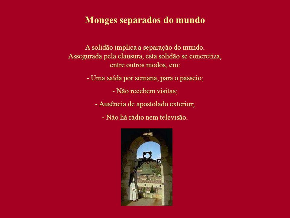 Monges separados do mundo A solidão implica a separação do mundo. Assegurada pela clausura, esta solidão se concretiza, entre outros modos, em: - Uma