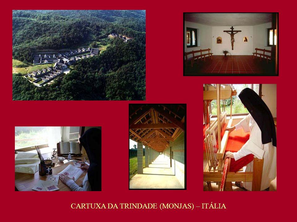 CARTUXA DA TRINDADE (MONJAS) – ITÁLIA