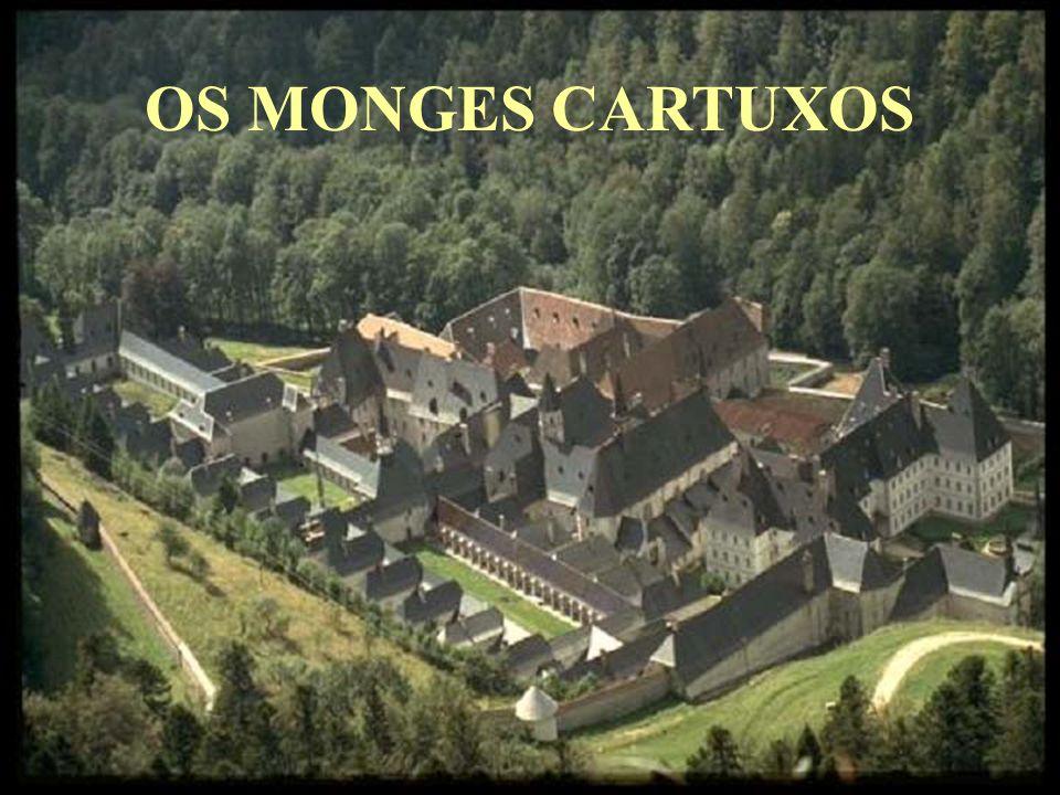 Produzido por: Dr. Dário A S Mattos - Psiquiatra (dasmattos@yahoo.com.br)