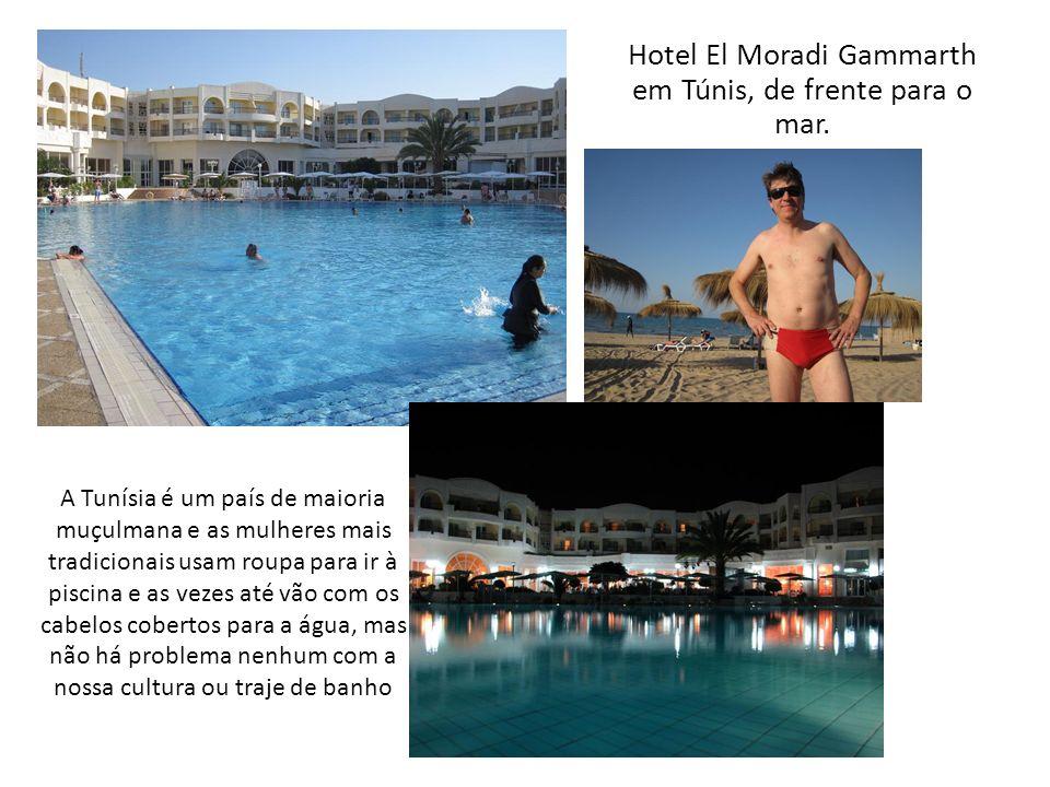 Depois de uma viagem comprida chegamos à Túnis, fomos recebidos pelo nosso guia Mohamed, que falava espanhol e nos levou ao nosso hotel para almoçarmos Comida boa esta da Tunísia!!!
