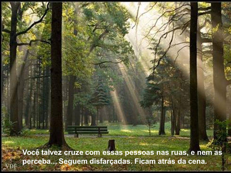 TEXTO: extraído do site: www.azullmarinho.com.br Formatação: J. Meirelles celjm.@uol.com.br