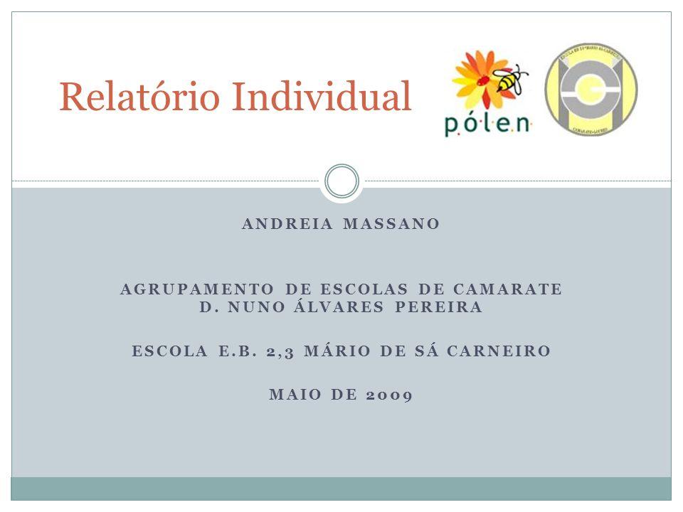 ANDREIA MASSANO AGRUPAMENTO DE ESCOLAS DE CAMARATE D. NUNO ÁLVARES PEREIRA ESCOLA E.B. 2,3 MÁRIO DE SÁ CARNEIRO MAIO DE 2009 Relatório Individual