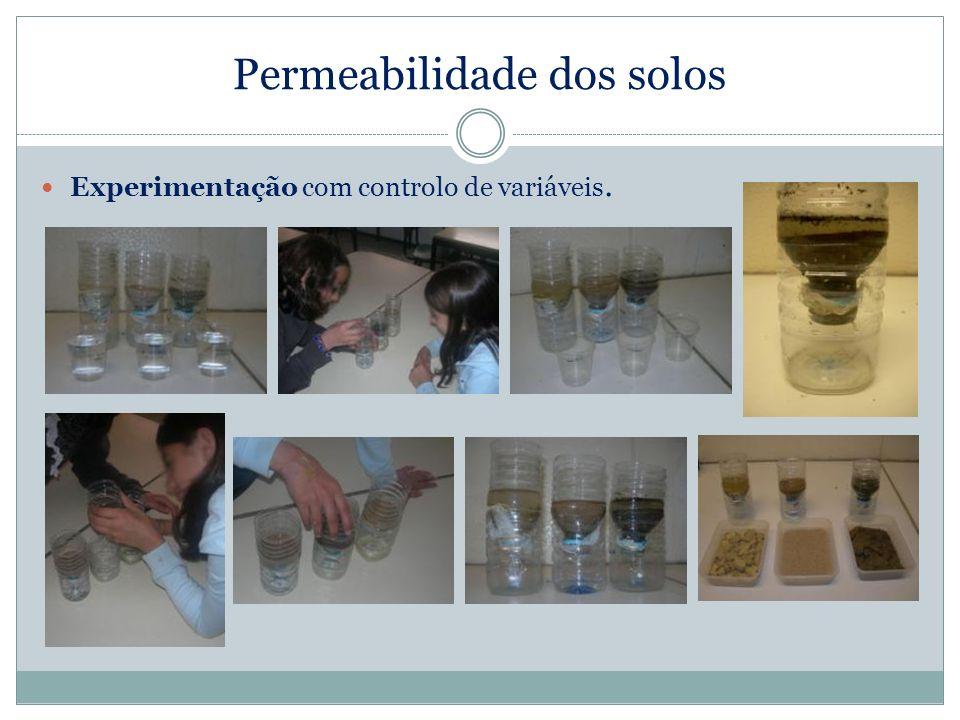 Permeabilidade dos solos Experimentação com controlo de variáveis.
