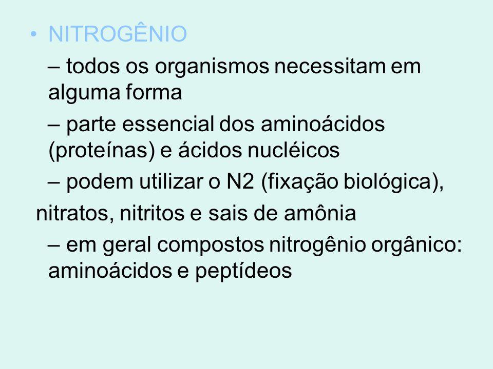 NITROGÊNIO – todos os organismos necessitam em alguma forma – parte essencial dos aminoácidos (proteínas) e ácidos nucléicos – podem utilizar o N2 (fi