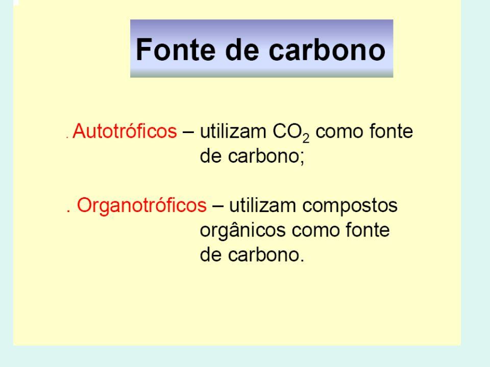 Nutrição e metabolismo microbiano Condições físicas para o cultivo de bactérias TemperaturaTemperatura pHpH Atmosfera gasosaAtmosfera gasosa LuzLuz