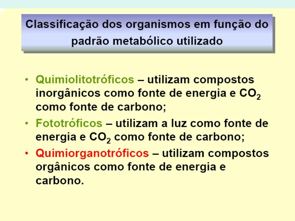 1- Metabolismo Microbiano EX: BACTÉRIA ORGANOTRÓFICA Atividade metabólica – meio de cultura – glicose- única fonte de carbono, sais minerais fornecendo fontes de N, H,O,S,P e Mg Glicose – glicose- 6- fosfato – ácido pirúvico
