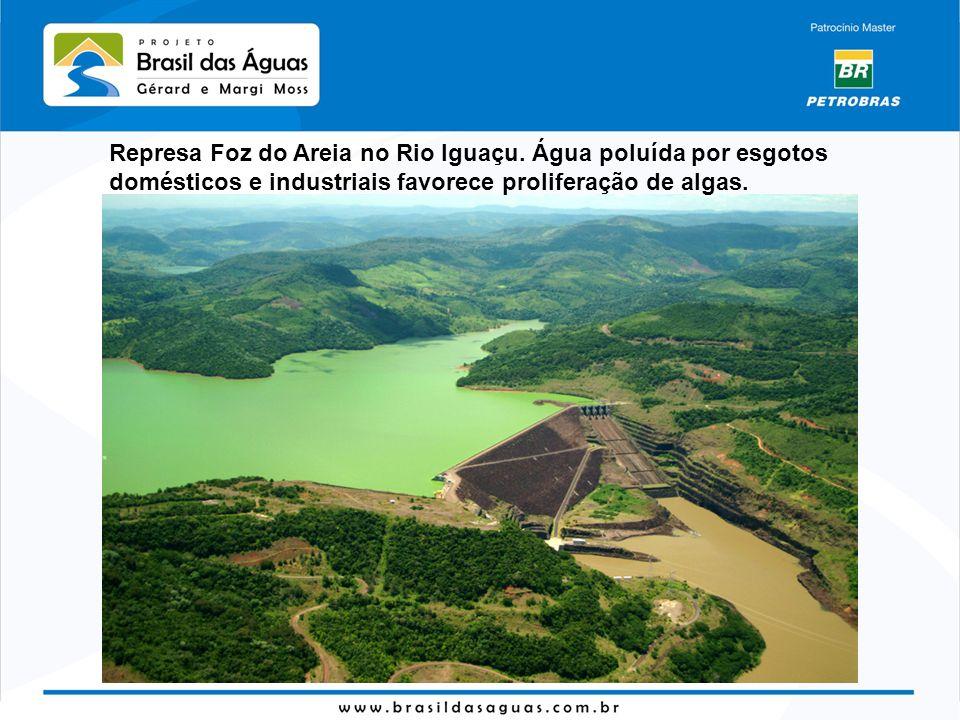 Represa Foz do Areia no Rio Iguaçu. Água poluída por esgotos domésticos e industriais favorece proliferação de algas.
