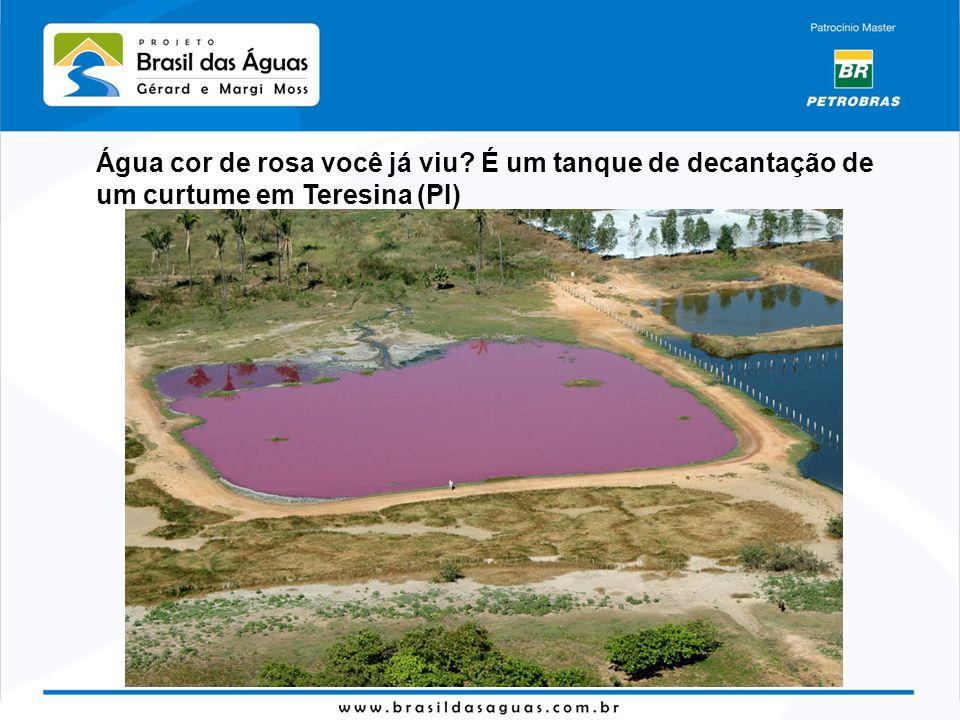 Água cor de rosa você já viu? É um tanque de decantação de um curtume em Teresina (PI)