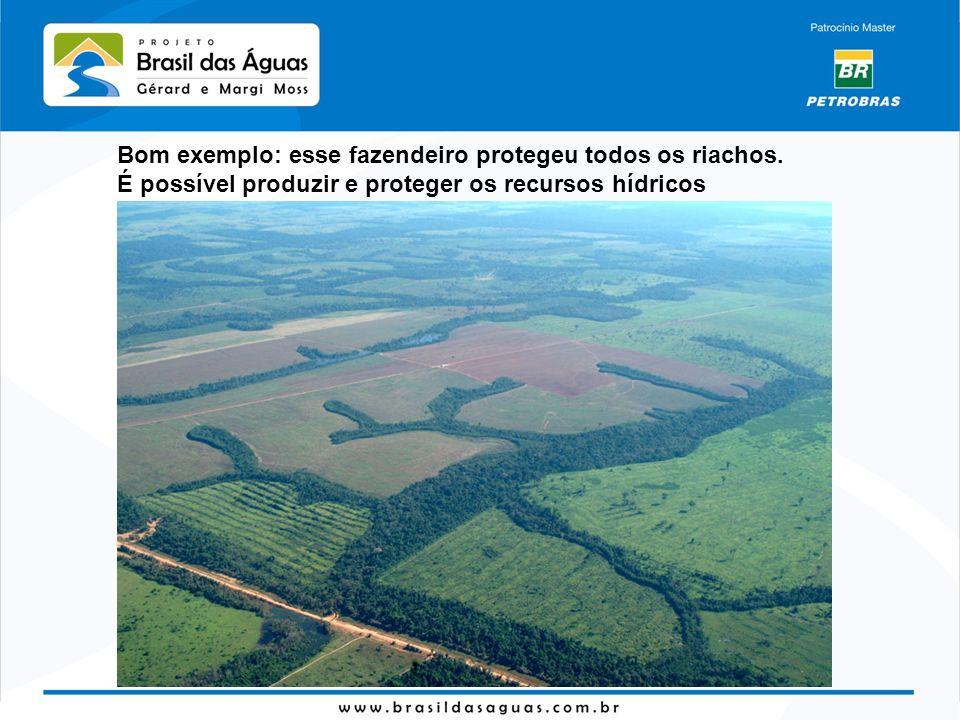 Bom exemplo: esse fazendeiro protegeu todos os riachos. É possível produzir e proteger os recursos hídricos