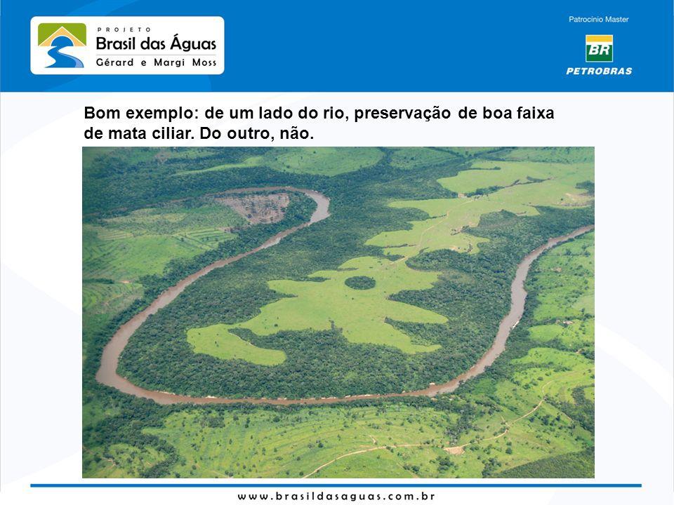 Bom exemplo: de um lado do rio, preservação de boa faixa de mata ciliar. Do outro, não.