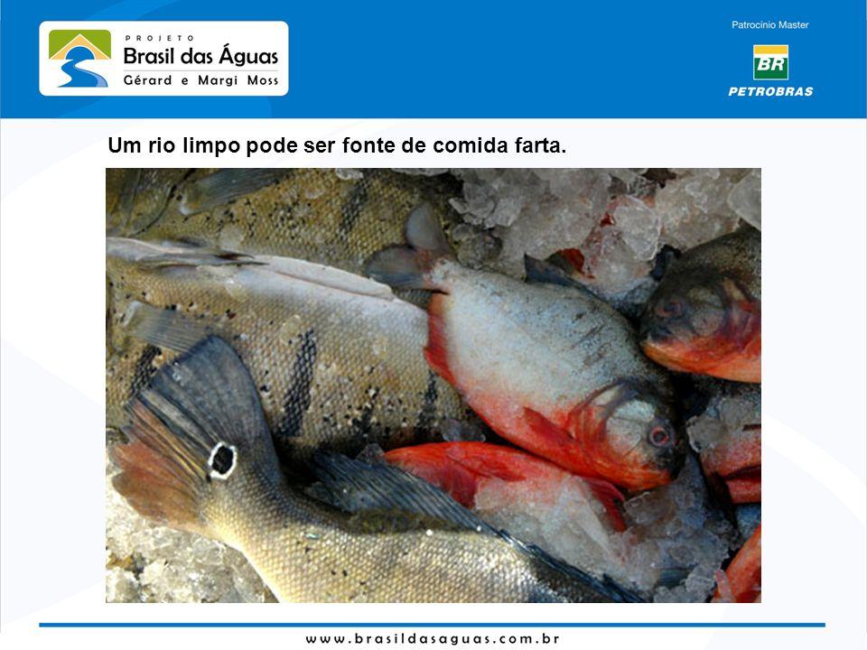 Um rio limpo pode ser fonte de comida farta.