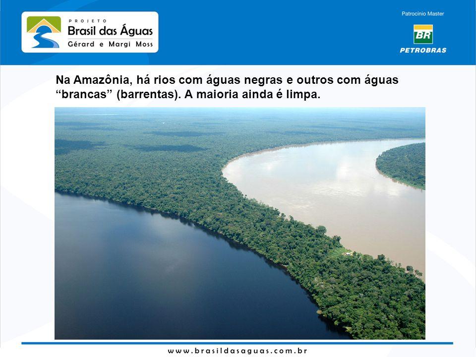 Na Amazônia, há rios com águas negras e outros com águasbrancas (barrentas). A maioria ainda é limpa.
