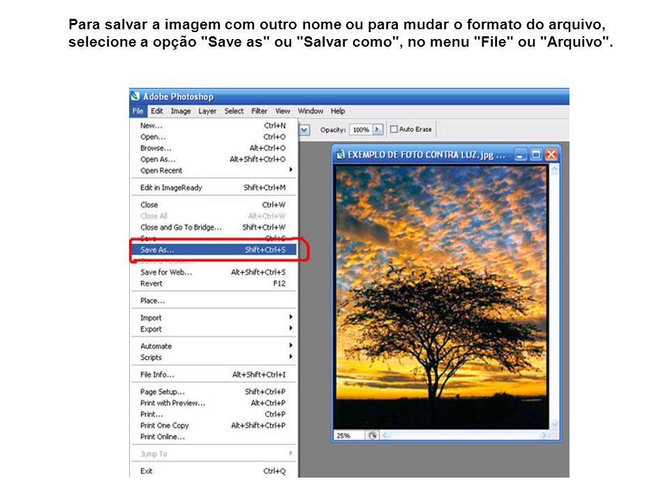 Para salvar a imagem com outro nome ou para mudar o formato do arquivo, selecione a opção