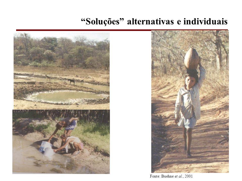 Soluções alternativas e individuais Fonte: Buehne et al., 2001