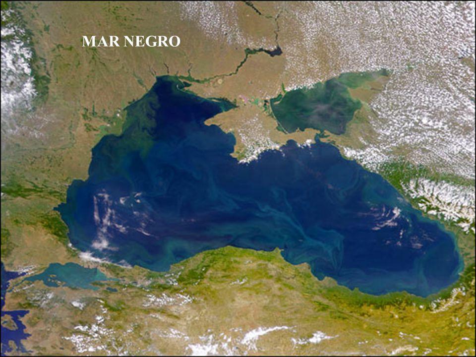 A essa distância já podemos ver a floresta bem definida, um pedaço do lago e as edificações 10 2 100 metros